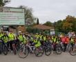La Via Rhôna en vélo : journaux de voyage